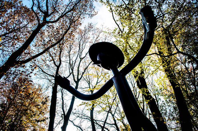 Goos vormt een logisch geheel met het bos van De Goudvink.