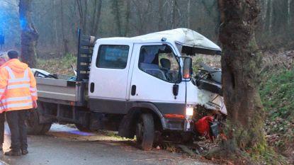 Bestuurder kleine vrachtwagen zwaargewond na klap tegen boom