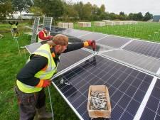 Waterschap legt lege plekken bij rioolwaterzuivering  in Heeswijk-Dinther vol met zonnepanelen