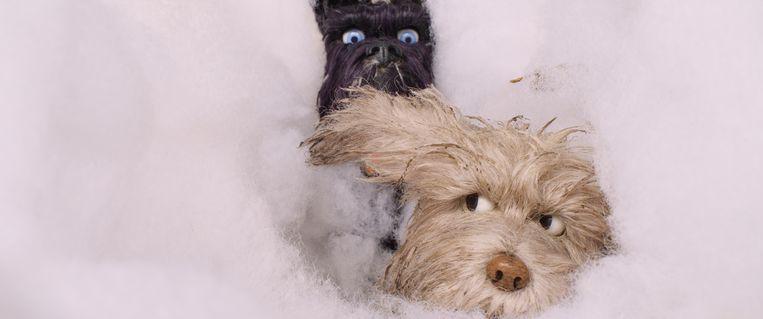 Isle of Dogs, de karakters Chief (Bryan Cranston) en Igor (Roman Coppola). Beeld
