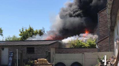 Hevige brand vernielt bungalow en maakt gezin met vier kinderen dakloos