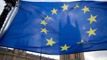 """""""Europese Unie acht einde brexit-onderhandelingen in 2020 moeilijk haalbaar"""""""