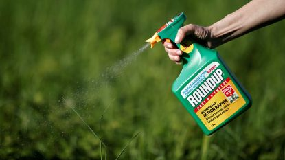 Amerikaanse tuinman vordert 43 miljoen euro schade bij Roundup, is dat in België ook mogelijk?