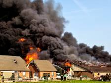 Inferno in varkensstal Streefkerk: 'We stonden er met onze neus bovenop, maar konden niets doen'