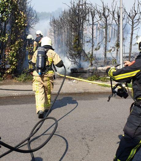 Honden, papegaaien en 44 cavia's opgevangen na brand in Hengelo