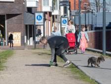 'Hondenverbod? Als winkelier wil je uiteindelijk iedereen binnen hebben, met of zonder hond'