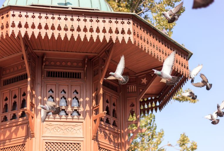 Detail van de Sebilj-fontein.  Beeld RV