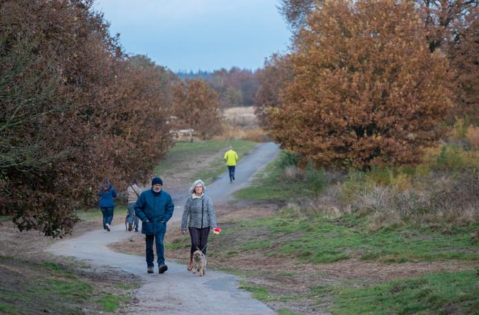Het hondenlosloopgebied op de Edese Heide.