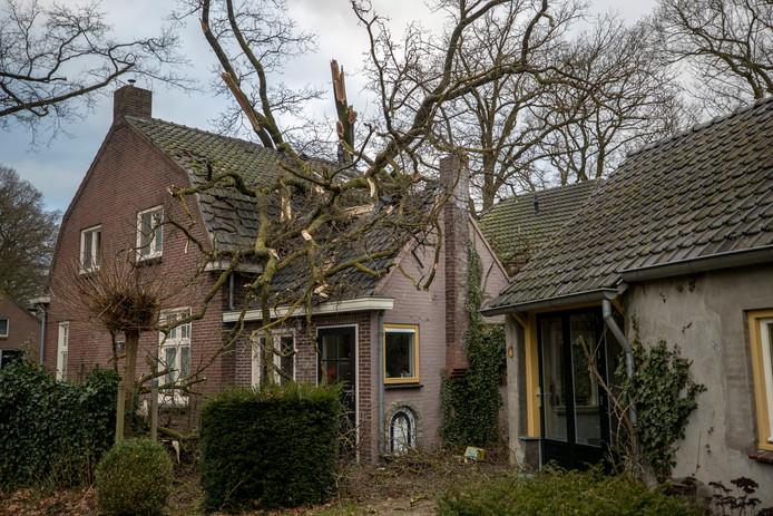 Het huis van het gezin Dingemans in Sint-Michielsgestel raakte zwaar beschadigd.