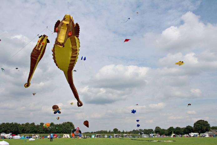 In het derde weekend van augustus is het tijd voor de Rijsbergse Vliegerdagen. Vliegeraars uit binnen- en buitenland komen in actie op de weilanden aan de Tiggeltsestraat. archieffoto Jeroen Jongeneelen