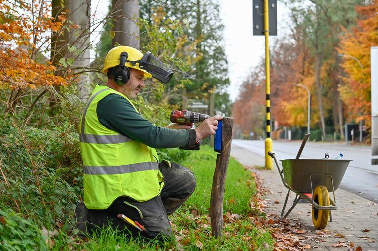 Het Agentschap Natuur en Bos laat werklui een hele reeks reewildspiegels plaatsen langs Buggenhout Bos om te voorkomen dat reeën nog oversteken en aangereden worden door een auto.