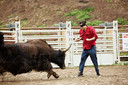 Johnny Knoxville gaat in Jackass: Number Two de confrontatie met een stier aan.