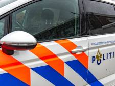 Agent loopt kneuzingen en hersenschudding op bij arrestatie, politie zoekt getuigen