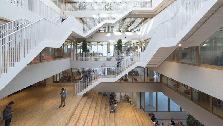 Boven de enorme trap ontvouwt zich een ingenieus stelsel van trappen. Beeld null