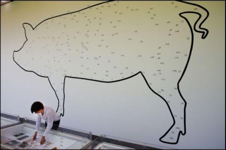 Opbouw van de tentoonstelling PIG 05049 van ontwerpster Christien Meindertsma. ANP Beeld