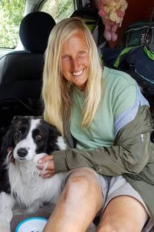 Schaapsherdershond teruggevonden na massale zoekactie