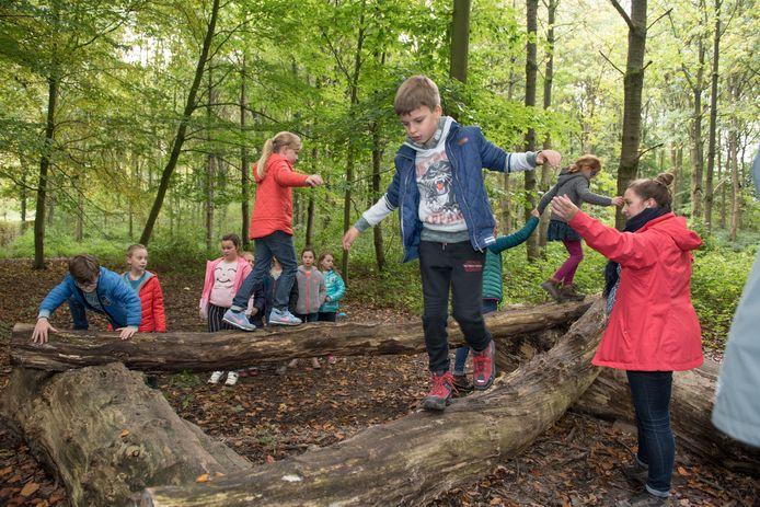 Kinderen leven zich uit in het park van Breivelde in Zottegem.