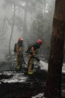 Zeer grote bosbrand op de Nederheide onder controle, brandweer nog druk aan het blussen