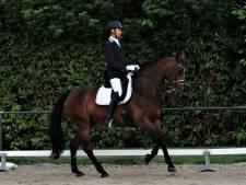 Miltenburg piekt met Janneke tijdens Midsommer Dressuurcyclus