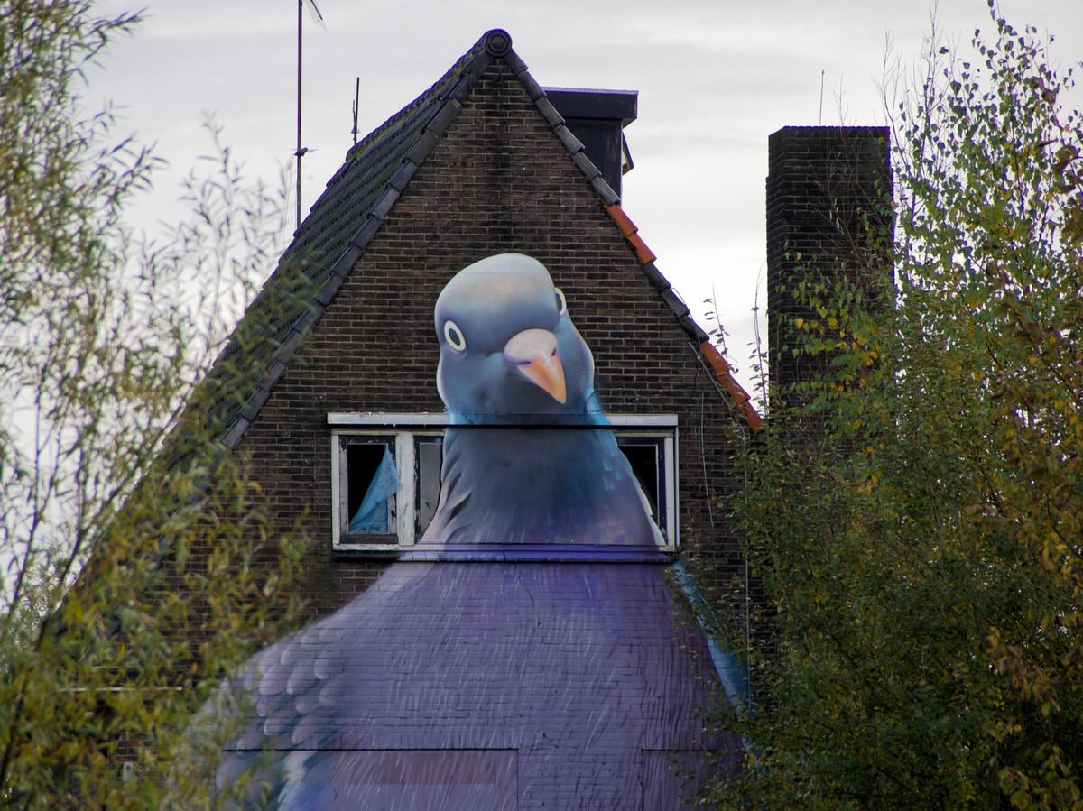 Het pand, met duif, dat tot enkele jaren gelede op de beoogde kavel voor het appartementencomplex stond.