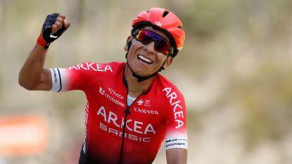 """'Quintana 2.0' samen met Evenepoel de zegekoning van het wielerseizoen: """"Hij is met de kleinste dingen bezig, tot aan het gewicht van zijn broek toe"""""""