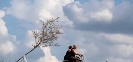 Laatste 610 bomen Witte Lint bij Zutphen verdord: fiasco is compleet