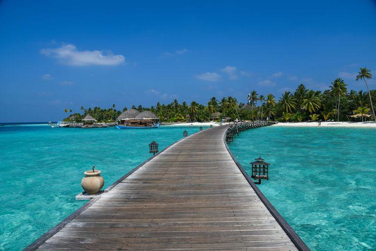 Toeristen op deze prachtige eilanden in de Indische Oceaan komen zelden bewoners tegen. Die zijn doorgaans heel wat minder tevreden. Beeld LightRocket via Getty Images