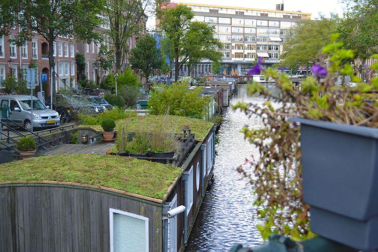 De Gracht van Smaragd Beeld Rooftop Revolution