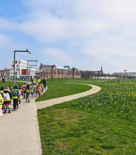 Stad herstelt gras in Park Spoor Noord