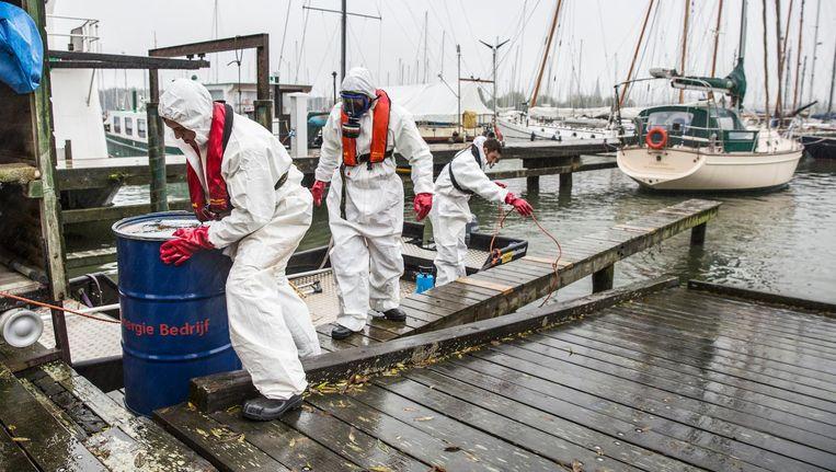 Medewerkers van het Hoogheemraadschap Hollands Noorderkwartier halen karkassen uit de binnenwateren. Beeld Dingena Mol