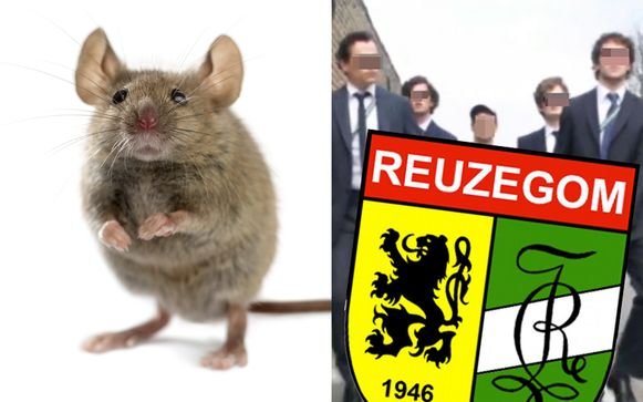 Om 'schachtenpap' te maken, draaide een lid van de studentenclub een levende muis door de blender.
