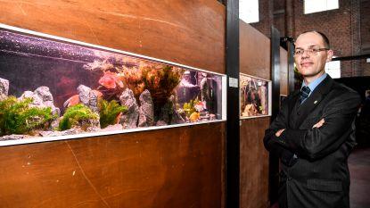Betta viert jubileum met grote expo en nieuwe toekomstplannen