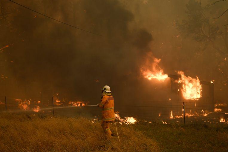 Australië is al maanden in de greep van hevige bosbranden.  Beeld EPA