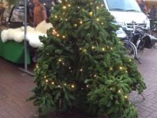 Boerenmarkt krijgt kerstboom van boerenkool