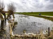 'IJsseldijk verstopt door ramptoeristen'