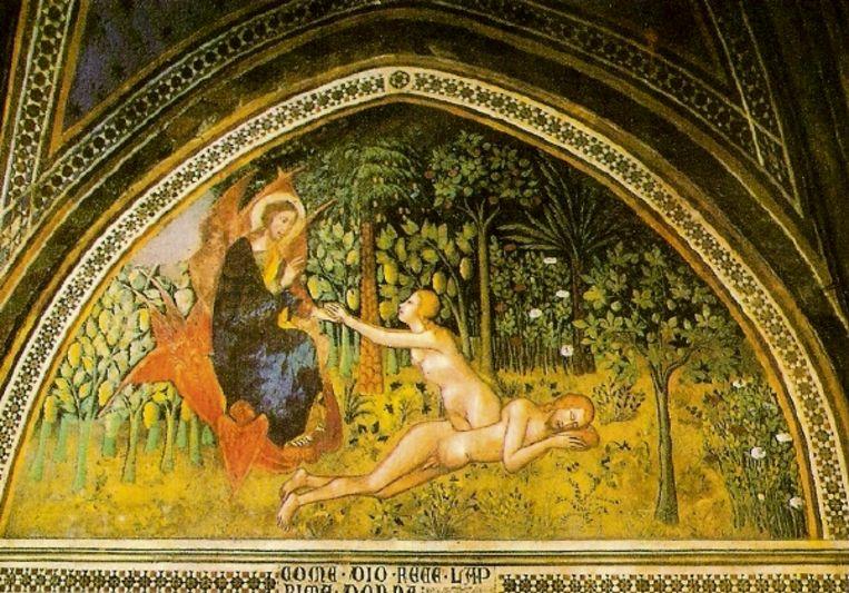 Bartolo di Fredi, 'De schepping van Eva' (1356) fresco, Chiesa della Collegiata, San Gimignano, Italië. (Trouw) Beeld