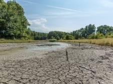 Droogte dwingt waterschappen tot actie: 'Record 1976 gaat eraan'