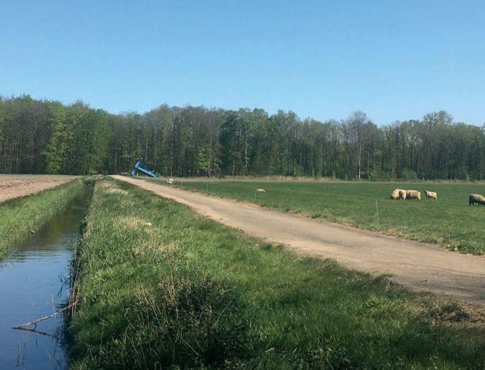 Over een aantal jaren zal op deze plek in het Waterloopbos een zonnepark verrijzen.