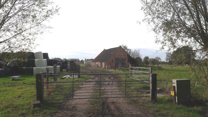 Naast zijn veldschuur aan de Peter van den Breemerweg wil de boer een tijdelijke stal neerzetten.