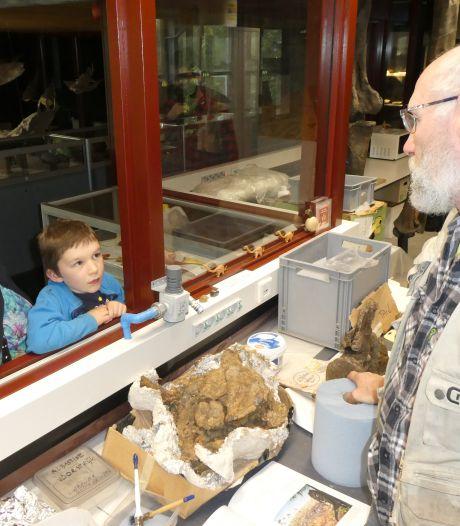 Puzzelen voor gevorderden met vele honderden Diplodocusbotten in Boxtel