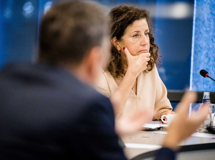 Minister Ingrid van Engelshoven van Onderwijs, Cultuur en Wetenschappen (D66) tijdens een debat over hoger onderwijs.