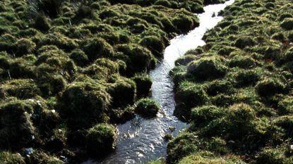 Waterkwaliteit in landbouwgebied verbetert niet meer