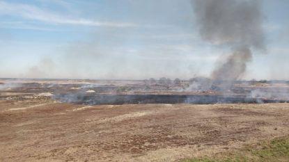 Schietoefening veroorzaakt eerste heidebrand van het jaar