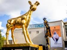 Ook Utrechtse documentaires en korte films te zien op Nederlands Film Festival