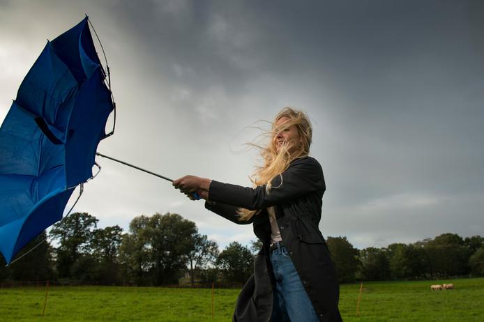 In Nederland wacht Marlou een nieuwe uitdaging: de draad oppakken