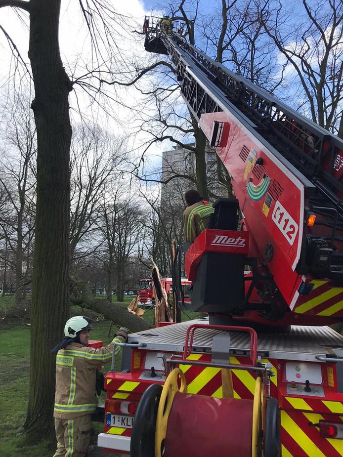 Op het Damplein moest de hoogtewerker van de brandweer ingezet worden.
