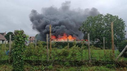 Tuinhuis gaat volledig in vlammen op na problemen met kachel, ook asbest vrijgekomen