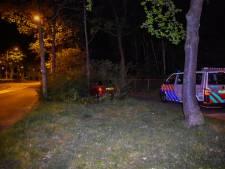 Automobilist rijdt de struiken in met auto van vader en slaat op de vlucht in Nijmegen
