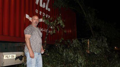 Dan heb je die nagelnieuwe truck net geparkeerd, en dan valt er een boom op...