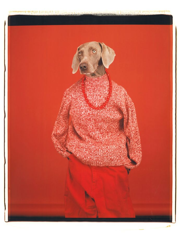 Casual (2002) van William Wegman.